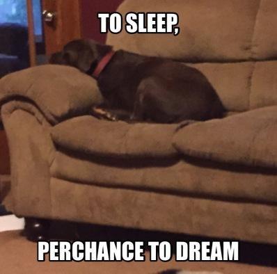 SleepDream